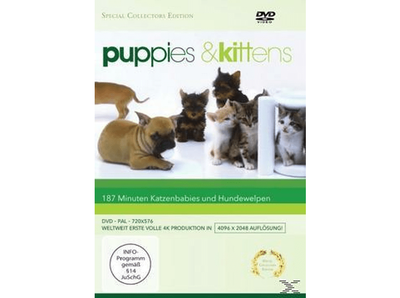 Puppies & Kittens [DVD]