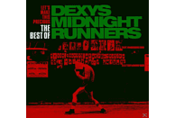 Dexys Midnight Runners - Lets Make This Precious-The [CD]