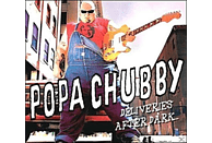 Popa Chubby - Deliveries After Dark [CD]