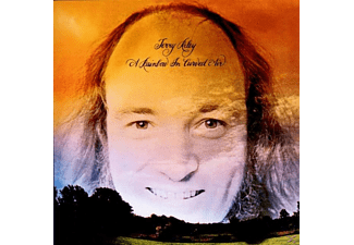 Terry Riley - A Rainbow In Curved Air (Remastered) - (CD)