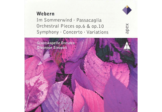 Skd - Works For Orchestra(Im Sommerwind/Passacaglia/Conc - (CD)