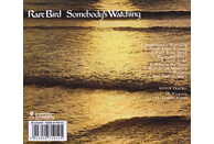 Rare Bird - Somebody's Watching (Expanded+Remastert) [CD]