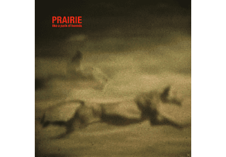 Prairie - Like A Pack Of Hounds - (LP + Download)