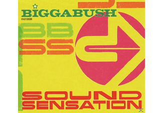 VARIOUS - Biggabush-Sound Sensation - (CD)