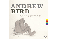 Bird Andrew - Things Are Really Great Here, Sort Of [CD]