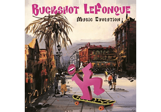 Buckshot Lefonque - MUSIC EVOLUTION - (Vinyl)