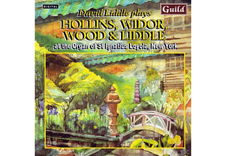 David Liddle - Hollins/Widor/Wood Orgelwer - (CD)