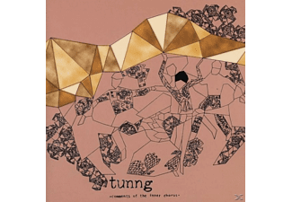 Tunng - Comments Of The Inner Chorus (Ltd.) [Vinyl]