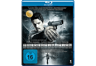 Predestination - (Blu-ray)