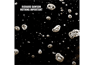 Richard Dawson - Nothing Important - (Vinyl)