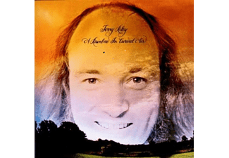 Terry Riley A Rainbow In Curved Air (LP) Electronica/Dance Vinyl