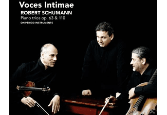 Voces Intimae - Piano Trios op.38 & 110 - (CD)