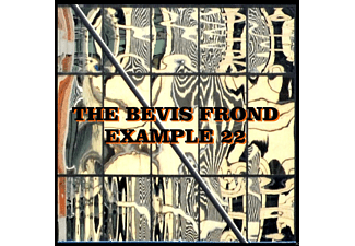 The Bevis Frond - Example 22 - (CD)