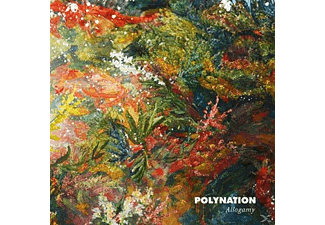 Polynationb - Allogamy - (Vinyl)