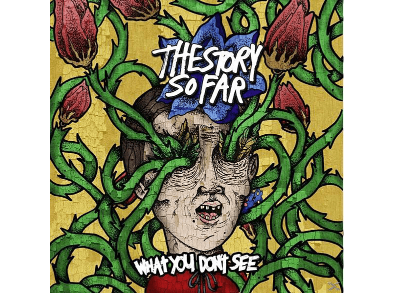 Story So Far - What You Dont See [Vinyl]