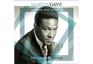 Marvin Gaye - Stubborn Kind of Fellow - The Legend Begins (Vinyl LP (nagylemez))