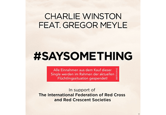 Charlie Winston, Gregor Meyle, VARIOUS - Say Something [5 Zoll Single CD (2-Track)]
