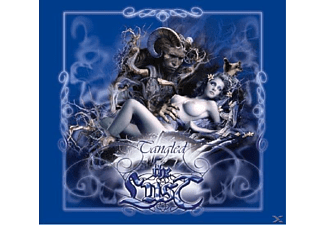 The Lust - Tangled - (CD)