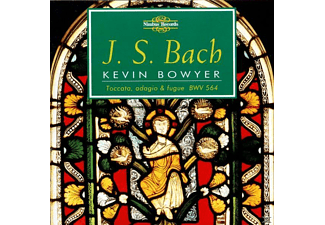 Kevin Bowyer - ORGAN WORKS VOL.6 - (CD)
