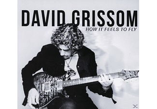 David Grissom - How It Feels To Fly - (CD)