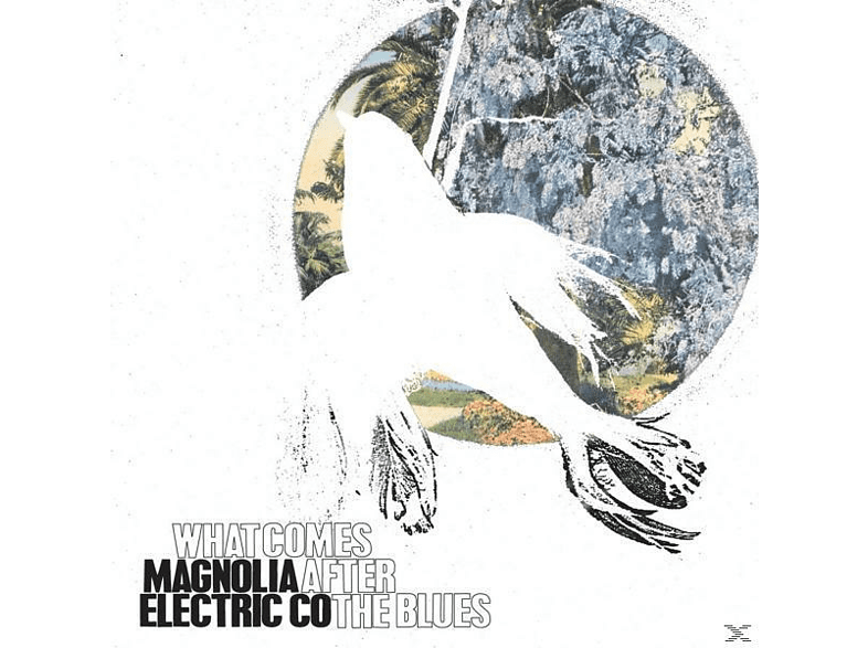 Magnolia Electric Co - What Comes After The Blues [Vinyl]