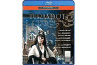 VARIOUS, Chorus And Childre's Choir Of The Theatro Carlo Felice Orchestra - Turandot [Blu-ray]