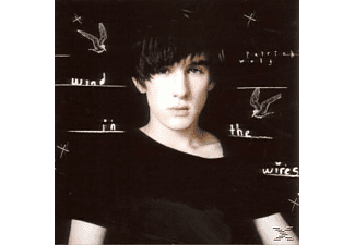 Patrick Wolf - Wind In The Wires - (CD)