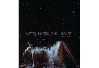 VARIOUS - After Work Chill House - (CD)