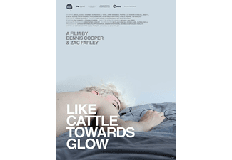 Like Cattle Towards Glow - (DVD)