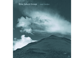 Dino Group Saluzzi - JUAN CONDORI - (CD)