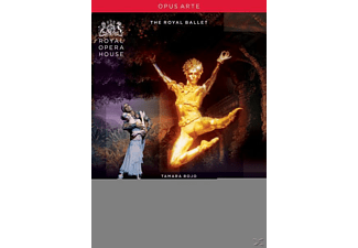 Ovsyanikov/Royal Ballet - La Bayadere [Uk Import] - (DVD)