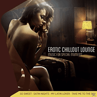 Lovers Lounge Club - Erotic Chillout Lounge-Music For Special Moments [CD]