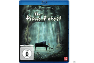 Piano Forest [Blu-ray]
