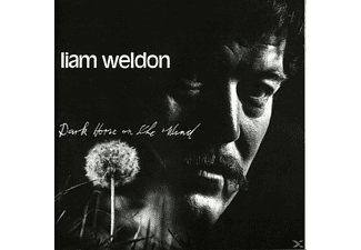 Liam Weldon - DARK HORSE ON THE WIND - (CD)