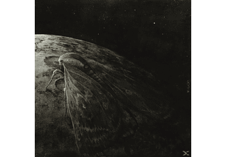 Augrimmer - Moth And The Moon - (CD)