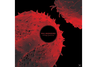 Palindrome - Strange Patterns (Lp+Mp3) - (LP + Download)