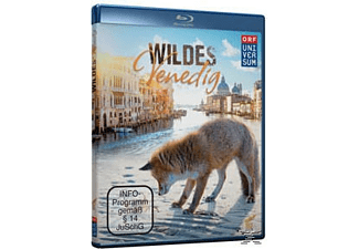 Wildes Venedig - (Blu-ray)
