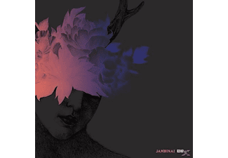 Jambinai - A Hermitage [LP + Download]