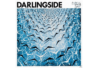 Darlingside - Birds Say (LP) - (Vinyl)