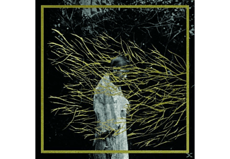 Forest Swords - Emgravings - (Vinyl)