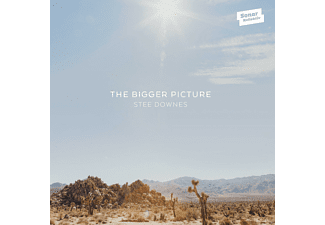 Stee Downes - The Bigger Picture - (CD)