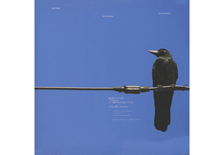 Keiji Haino, Jim O'rourke, Oren Ambarchi - I Wonder If You Noticed ''I'm Sorry''...(2LP) - (Vinyl)