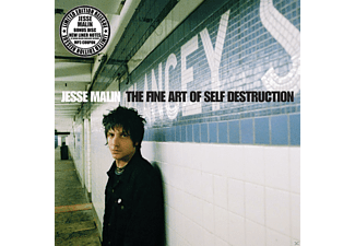 Jesse Malin - The Fine Art Of Self Destruction (Lp Reissue) - (Vinyl)