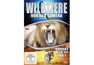 Wildtiere vor der Kamera - Caught in the Act (Teil 1) - (DVD)