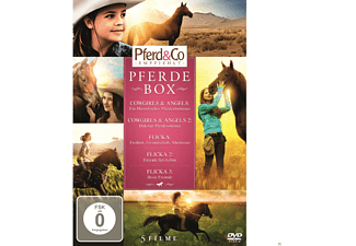 Pferde Box (Cowgirls and Angel 1 & 2, Flicka 1, 2 & 3) - (DVD)