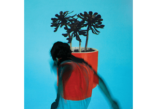 Local Natives - Sunlit Youth - (CD)