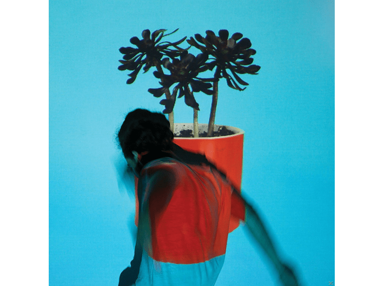 Local Natives - Sunlit Youth [CD]