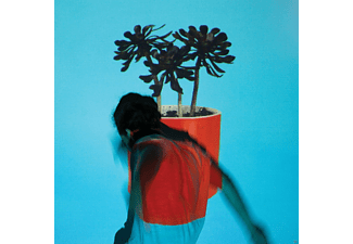 Local Natives - Sunlit Youth - (LP + Download)