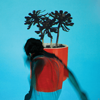 Local Natives - Sunlit Youth [LP + Download]
