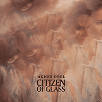 Agnes Obel - Citizen Of Glass [Vinyl]